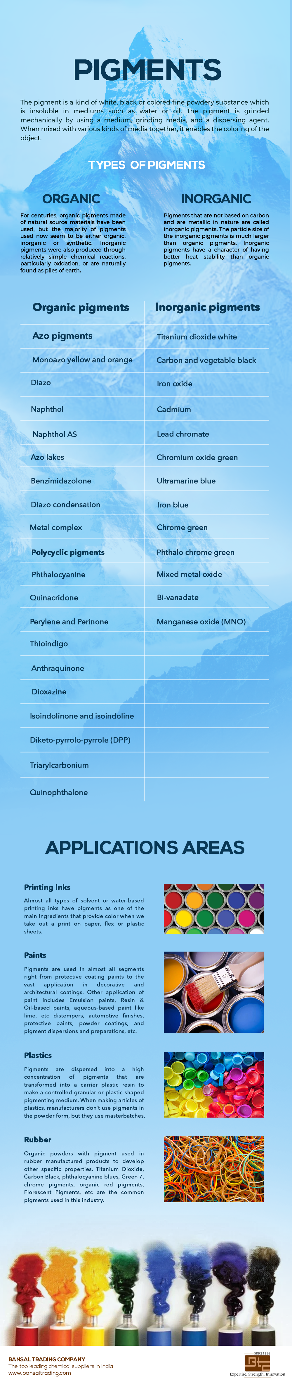 Different Types of Pigments Infographic